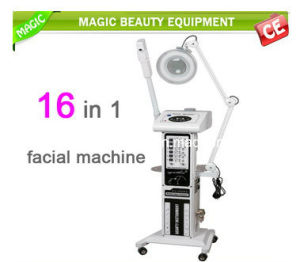 16in1 Ultrasonic Vacuum Spray Steamer Woood Lamp Dermabrasion Muitifunctional pictures & photos