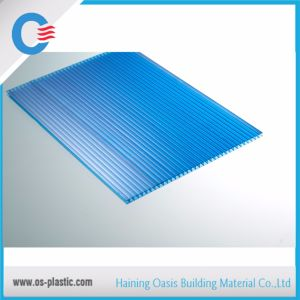 Factory Direct Polycarbonate Hollow Sheet pictures & photos