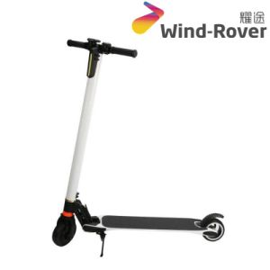Wind Rover Folding Carbon Fiber Electric Bike Parts Electric Scooter with Antivibrator pictures & photos