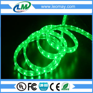 Outdoor IP68 High volt Flexible LED Strip Light pictures & photos