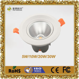 LED Lighting Supplier COB Downlight 20W pictures & photos