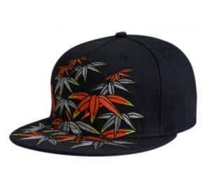 Chinese Style Embroidery Snapback Cap pictures & photos