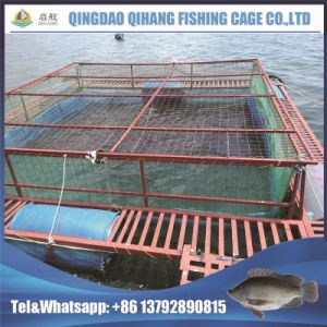 Knotted Net HDPE Fish Trap pictures & photos