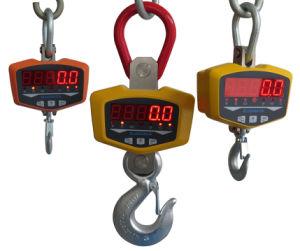 300kg GLE Crane Scale pictures & photos