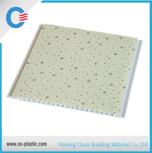 Hot Stamping Transfer Printing PVC Ceiling Panels in China Direct Factory pictures & photos