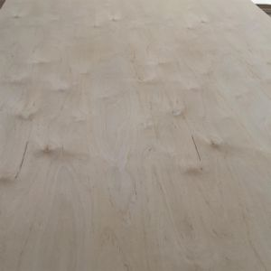 9mm 1220*2440mm C/D Grade E1 Glue White Birch Plywood pictures & photos