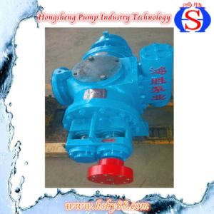 Double Screw Pump with Excellent Quality and Low Price pictures & photos