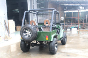 Best Quality Electric ATV 250cc for Sports Fun pictures & photos