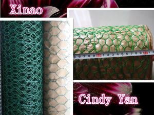 PVC Coated Hexagonal Wire Netting Factory pictures & photos