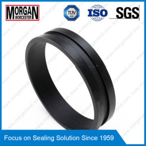 Fi Profile Hydraulic Cylinder Rod Guide Ring/Wear Seal pictures & photos
