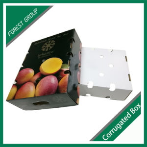 Top and Bottom Colorful Fruit Boxes pictures & photos
