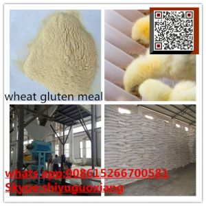 Wheat Gluten Meal 75% Protein for Animal Feed pictures & photos