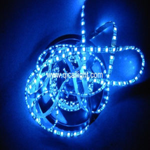 Hight Quality 2835 SMD LED Strip pictures & photos