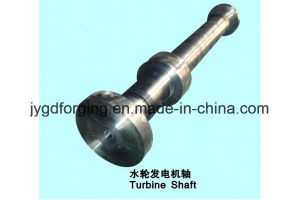 Offer Tp316 Stainless Steel Banjo Bolt pictures & photos