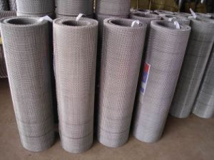 Galvanized Steel Crimped Wire Fabric pictures & photos