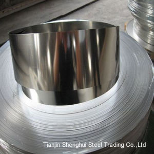 Professional Manufacturer Stainless Steel Strips (AISI310S) pictures & photos