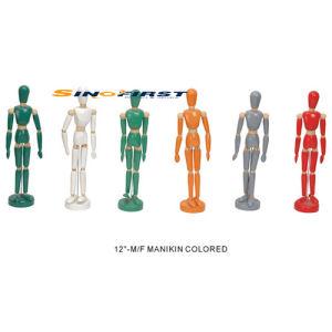 Painted Human Manikin, Manikin, Man Manikin (12′′-M/F) pictures & photos