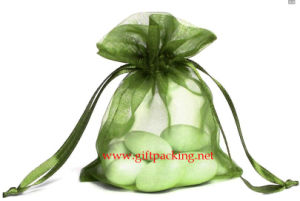 4X6 Willow Organza Bag