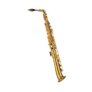 Straight Alto Saxophone/ New Design (SAS-205) pictures & photos