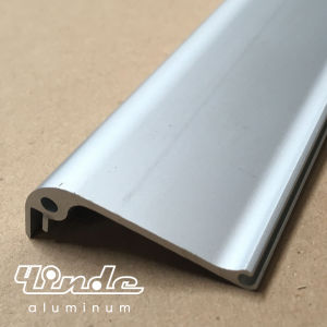 Aluminum Extrusion/Extruded Aluminium Profile for Trolley Frame pictures & photos