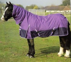 Waterproof and Breathable Winter Horse Blanket (SMR1640) pictures & photos