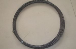 Double Strand Wire (HX15-1) pictures & photos
