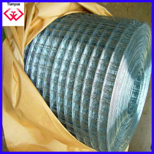 Stainless Steel Wire Welded Wrie Mesh pictures & photos