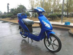 Electric Bike (HSM-302 (EN))