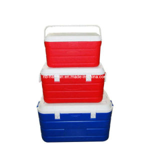 Cooler Box for Picnic