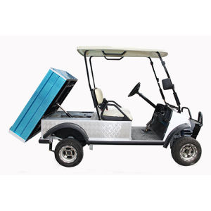 Golf Buggy Cargo Truck Carrier Vehicle with Solar Panel pictures & photos