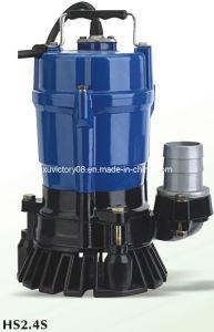Submersible Garden Pump (HS2.4S) pictures & photos