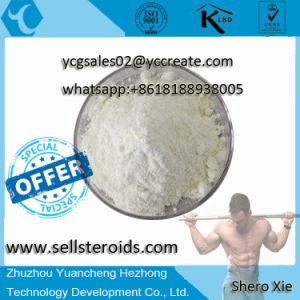 Steroid Powder Testosteron Sustanon 250 On Hot Sale for Muscle-Building pictures & photos