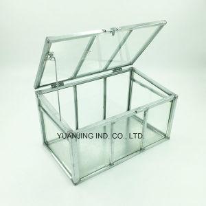 Garden Tools, Mini Greenhouse (PVC/Glass) for Plants/Flowers