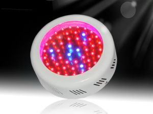 High Power 50W LED Grow Light