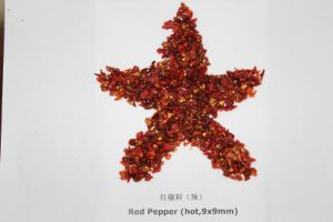 Red Pepper pictures & photos