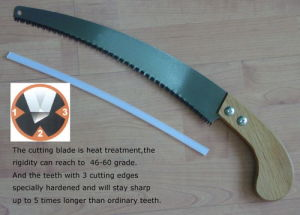 Pruning Saw pictures & photos