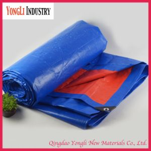 China PE Tarpaulin Factory pictures & photos