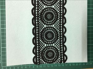 Garment Accessories Polyester Lace pictures & photos