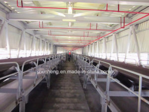 Widely Application Belt Conveyor in Power Plant pictures & photos