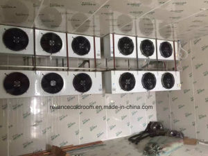 Fast Cooling Chiller and Freezer Room pictures & photos