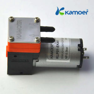 Micro Diaphragm Pump with DC Motor