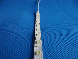 5050 DC12V LED Flexible Light Strip pictures & photos