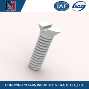 Suitable for Precision Machinery M0.4-1.4 Stainless Steel Rust Proof 1mm Micro Slotted Countersunk Head Screws pictures & photos
