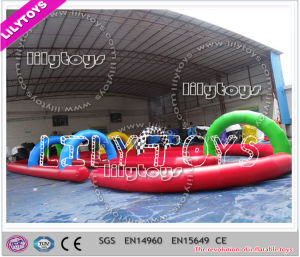 Lilytoys New Customize Kids Inflatable Zorb Ball Track for Match (J-SG-048) pictures & photos