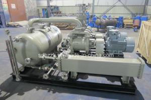 2be1153 Water/Liquid Ring Vacuum Pump (closed vacuum system)