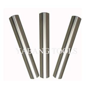Carbide Rods pictures & photos