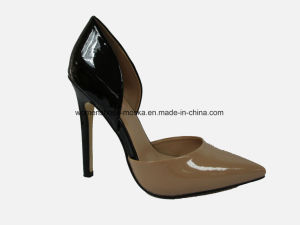 Hot Selling Women Fashion High Heel Dress Shoes with Pointy Toe pictures & photos