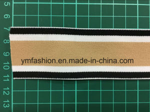 Jacquard Elastic Tape for Underwear Ym-1000 pictures & photos