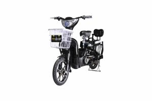 Zhongchi Hot Sale New Design E Electric Bicycle with Basket (TDR-305)