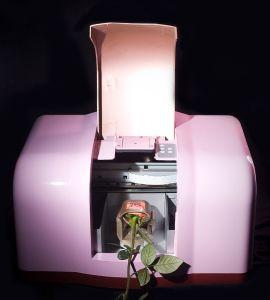 Digital Flower Printer (UN-FL-MN103) pictures & photos